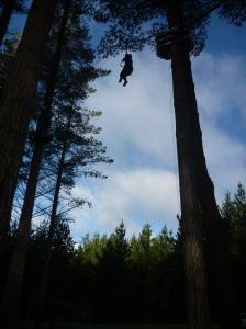 Tarzan | On a Jam Hunt