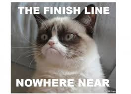 Grumpy cat finish line
